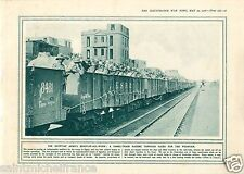 Egypt Army Camel-Train Cairo / Hospital Australia Barber WWI 14 18 PLANCHE 1916