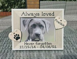Personalised Pet Memorial Photo Frame Cat Dog In Loving Memory. Any Wording.