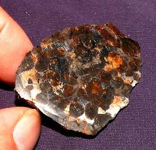 Meteorit Pallasit Sericho Kenia Endstück poliert Olivine 55x40x11mm 47,0g