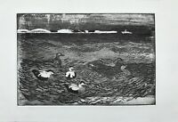 Aquatinta Radierung Enten auf dem Wasser Røsnæs Seeland Dänemark Winter 1978