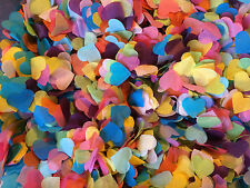 Bold Rainbow Colours Biodegradable Confetti Turquoise Pink Yellow up to 5 Cones