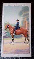 Metropolitan Police  Champion Horse  JUNO        Original 1930's Vintage Card