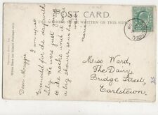 Miss Maggie Ward The Dairy Bridge Street Earlstown 1903  805a