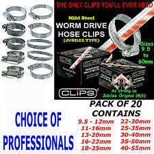 Assorted Hose Clamps 20PC Hose Clamp Jubilee Clips Type Set Mild Steel