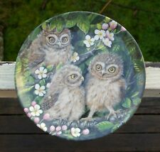 Wedgwood The Baby Owls Dick Twinney Bone China England Little Owl Chicks Plate