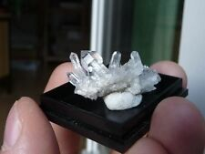 SZEPTERQUARZ Kristall Stufe (Star Claim, USA) Scepter Quartz Specimen #b