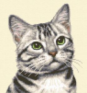 SILVER TABBY CAT, KITTEN ~ Complete counted cross stitch kit *Jann Designs