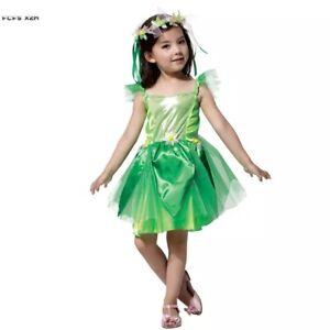 Girls Fairy  Tinkerbell Princess Party Dress Costume