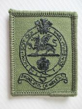 BRITISH ARMY MILITARY BERET CAP BADGE - PRINCESS OF WALES ROYAL REGIMENT PWRR
