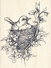 NESTLED BIRD R158 Stampendous Rubber Stamp - w/m  Free Shipping  NEW