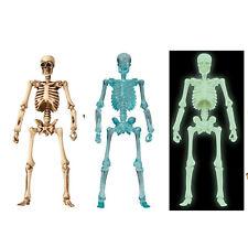 Kaiyodo miniQ Miniature Cube Dokuroman Skeleton Plus Pirates - Choose US Seller