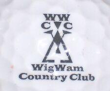 (1) Wigwam Country Cub Golf Course Logo Golf Ball (Black) (Arizona)