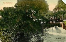 c1907 Printed Postcard; The Old Mill Dam, Sea Girt NJ Monmouth County Unposted