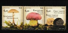 Mushrooms strip of 3 mnh stamps 2013 Croatia #880