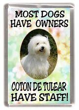"""Coton de Tulear Dog Fridge Magnet """"....Coton de Tulear Have Staff!"""" - Starprint"""