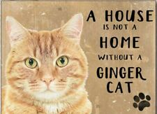 A House is Not a Home Without a Ginger Cat small steel sign 200mm x 150mm (og)