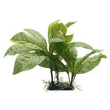 Fluval Plante D'aquarium pour Aquariophilie Spathiphyllum FL