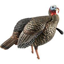 Avian X Hdr Jake Turkey Decoy