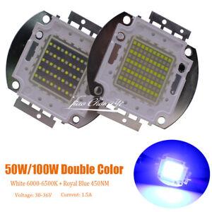 50W 100W Double Color led white +Royal Blue 28-36V  High Power LED Light lamp
