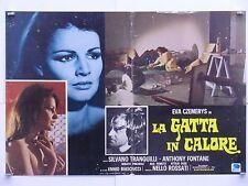 LA GATTA IN CALORE drammatico di Rossati con Eva Czemerys fotobusta 1972