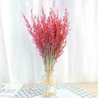 50 Pcs Pole Standing Wheat Grass Bouquet Artificial Party Deco Dried Flower C8B4