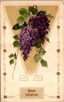 Best Wishes Old Postcard Embossed with Violets Posted 1911 A1
