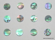 "1 inlay material set of 24pcs Paua abalone dots shell blanks size 1/4"" or 6.35mm"