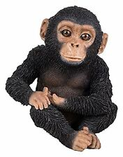 Vivid Arts - PET PALS WILDLIFE PET & CHIMP BOX - Baby Chimpanzee Sitting