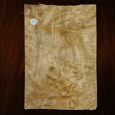 CONSECUTIVE SHEETS OF OLIVE ASH VENEER 21 X 31 CM OA#31 MARQUETRY