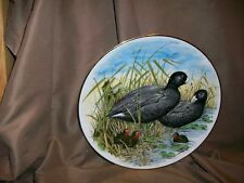 SOUTHERN LIVING GAME BIRDS OF THE SOUTH PLATE AMERICAN COOT AJ HERITAGE