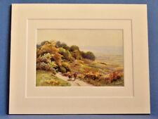 BURLEY MOOR NEW FOREST VINTAGE DOUBLE MOUNTED WATER COLOUR PRINT 10X8 c1920 RARE