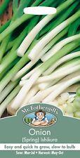 Mr Fothergills - Vegetable - Spring Onion Ishikura - 500 Seeds