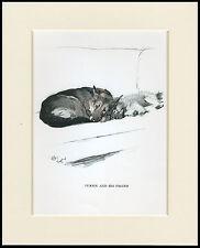 GERMAN SHEPHERD AND KEESHOND PUP SLEEPING 1930'S CECIL ALDIN DOG PRINT MOUNTED