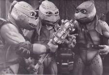 PF Turtles III ( Raphael , Donatello , Leonardo )