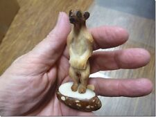 (Tne-Mee-303-A) Meerkat suricate meerkats Tagua Nut Figurine carving Vegetable