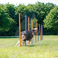 K9 Pursuits Agility Slalom/Weave Poles