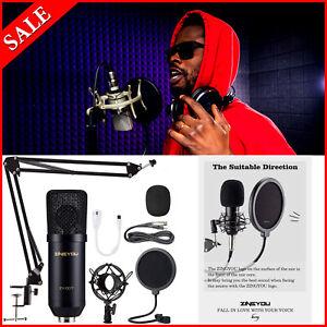 Rap Studio Microphone Kit Professional Music Sing Recording Equipment Auto-Tune.