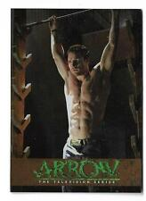 2015 Cryptozoic Arrow Season 1 Bronze Parallel Training TR7