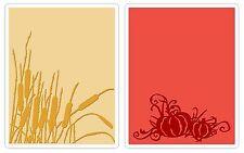 Sizzix Cattails & Pumpkin Patch Emboss 2pk set #656940 Retail $10.99 Tim Holtz!