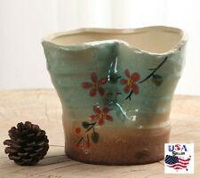 Succulent Plant Flower Ceramic Pot- Green/ Blue