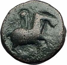 Celtic Tribe in area of Maroneia Thrace Ancient Greek Type Coin Horse i65054