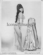 ORIG.1960 PHOTO-TANYA MITZOKO-STRIPPER EXOTIC-BURLESQUE THE EXPLOSIVE DOLL-BUSTY