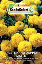 40 Semi/Seeds TAGETE Nano Doppio Giallo