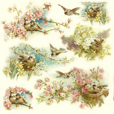 Rice paper -Birds and Flowers- for Decoupage Scrapbooking Sheet