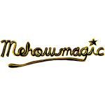 Mehow Magic Shop