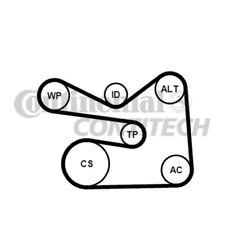 CONTINENTAL CTAM Wasserpumpe + Keilrippenriemensatz 6PK1733WP2 für VW PASSAT 3C2