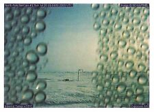 Postcard Jane D. Marsching NOAA Webcam Image 2005 Polar Dispatches Exhibit MINT