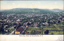 Hornellsville, NY - Birds Eye View