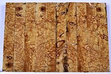 Pen Blanks SPALTED BIRDSEYE MAPLE Cross Angle Cut Turning Craft Wood 3/4 x 3 3/8