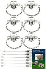 (6 Pack) Duke #1 Coilspring Double Jaw Value Package with Dvd and Cable Stakes